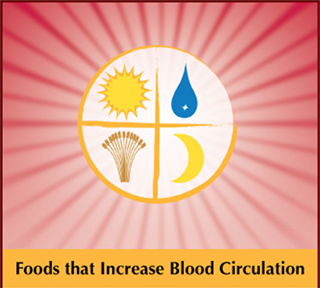 Foods That Increase Blood Circulation