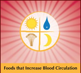 Foods That Increase Blood Circulation